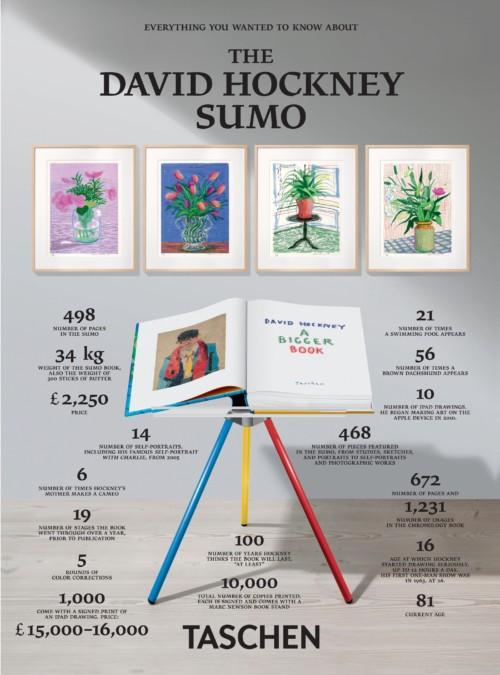 Hockney  -Sumo